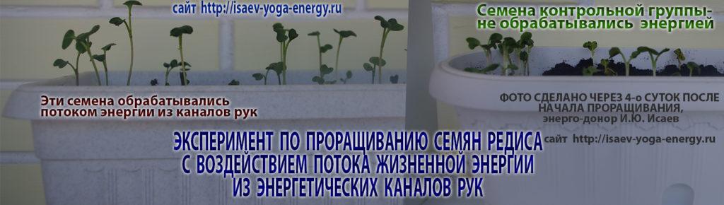 биоэнергия