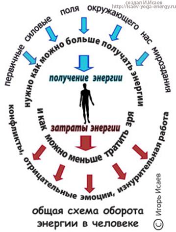 баланс энергий в теле